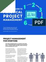 PracticalProjectManagement_eBook_by_MindGenius.pdf