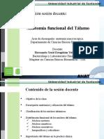 Anatomia Funcional Del Tálamo, Hipotalamo e Hipofisis. H. Yesid E.V
