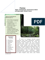 Modul (Plantae)