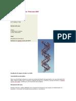 MIT Biologia Molecular