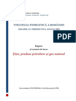 Raport Sesiune Lucru_Titei, Produse Petroliere Si Gaze Naturale_6 Iunie