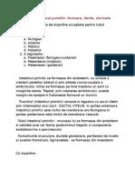 I.1.Tubul Intestinal Primitiv - Formare, Limite, Derivate