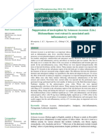 Suppression of Nociception by Solanum IncanumSuppression of Nociception by Solanum Incanum (1)