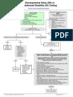 Developmental Delay (DD) or Intellectual Disability (ID) Testing Algorithm