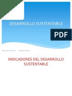 Clase 4 Ab Desarrollo Sustentable Indicadores Completo