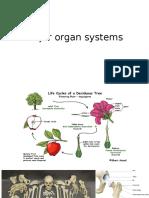 Major Organ Systems