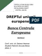 Referat Dr Ue2