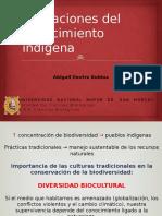 Aplicaciones Del Conocimiento Indígena de Las Plantas