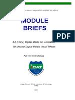 icat module briefs