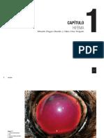 oftalmología veterinaria Ojo rojo