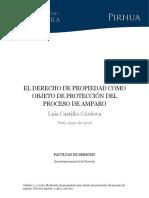 (2) El Derecho de Propiedad Como Objeto de Proteccion Del Proceso de Amparo. Castillo Córdova