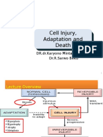 Cell Injury & Adaptation & Death