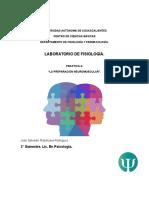 práctica union neuromuscular.docx