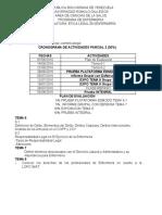 Cronograma y Plan de Evaluación Etica Legal Parcial II