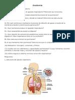 Cuestionario Aparato Respiratorio