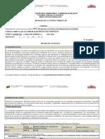Programa Instruccional Vicyamar Piña