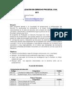 Especialización en Derecho Procesal Civil