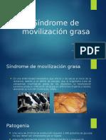 Síndrome de Movilización Grasa