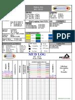 Master Log of Hg-34-13.PDF 100%PDF