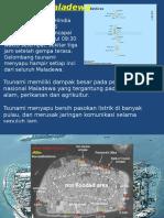 Maldives Tsunami