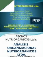 Analisis Organizacional Empresa Nutriorganicos Ltda