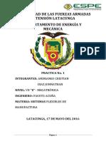 FMS PRACTICA N1