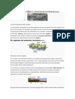 Asociaciones de Fallas y Estructuras Tectónicas