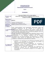 Programa dere publico informatico.doc