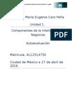 Autoevaluacion U1 (3)