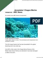 Bleaching 'Devastates' Chagos Marine Reserve - BBC News