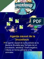 98069676-BRUCELOSIS-PRESENTACION