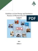 Guidelines GSDPLebanon(English)