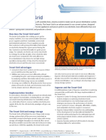 FactSheet Smart Grid2010[1]
