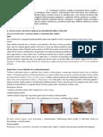 STABILNI SISTEMI - Instalacije, Sistemi i Uredjaji Za Odvodjenje Dima i Toplote