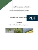 practicas-que-deberan-entregar-de-algas-liquenes-y-briofitas.doc