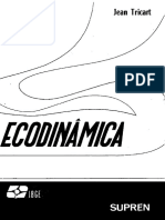 Ecodinâmica