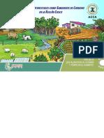 Sistemas Agroforestales como Sumideros de Carbono en la Región Cusco