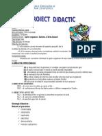 0_8proiectgeografie