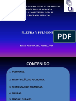 Pulmones y Pleura(2)