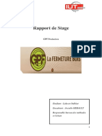 Rapprt de stage GPF Production