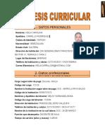 SINTESIS CURRICULAR formato (2).doc