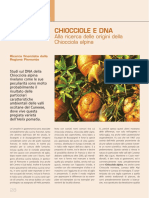 Chiocciole e DNA