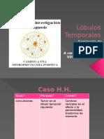 lobulost (1)