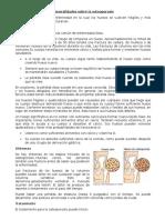 Generalidades Sobre La Osteoporosis