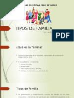 Tipos de Familia 21 de Agosto 2015