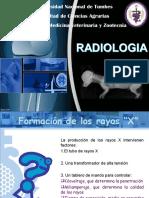 Radiologia Karla