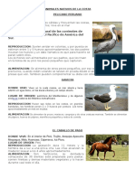 Animales Nativos Del La Costa Peruana