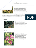 9 Plant Defense Mechanisms Britannica.com