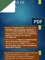 216615651-Figuras-de-Gesell.pptx