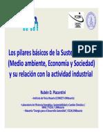 Los Pilares Básicos de La Sustentabilidad R D Piacentini